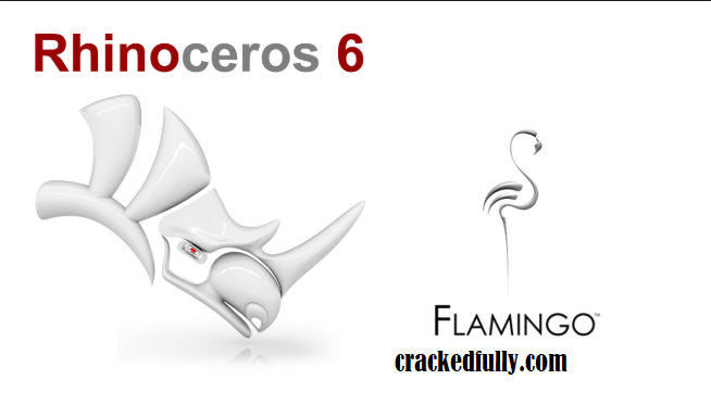 Rhinoceros crack